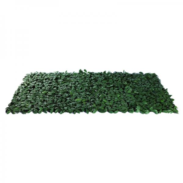 Muro Inglês Forração Verde